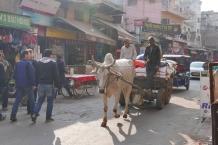 Delhi - Paharganj